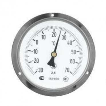 ТБП100Н/БФ термометр