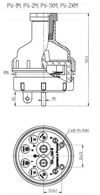 Датчик-реле уровня жидкости РУ-1-М, РУ-2-М, габаритные размеры
